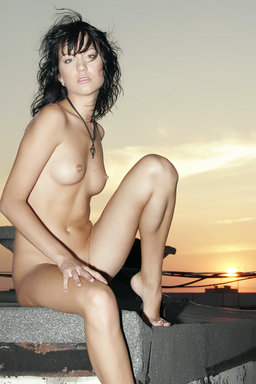 The dusky sky and the glorious setting sun provides a perfect se from The Life Erotic