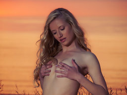 The fiery colors of the sunset makes a perfect background from The Life Erotic